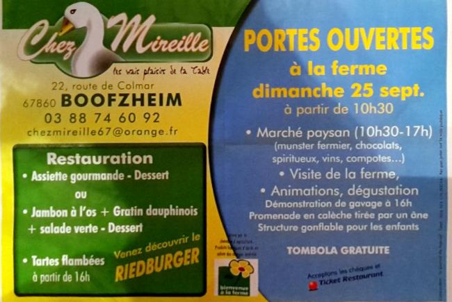 mireille_po2016